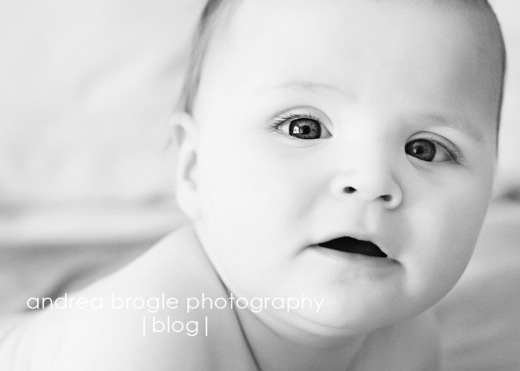 chicagoland baby photography