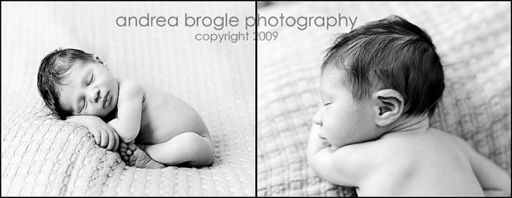 newborn photography in chicago