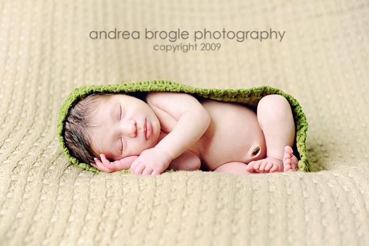 chicago photographer newborn